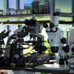 Microscopes at the NAT Lab