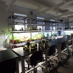 SVA Nature & Technology Lab