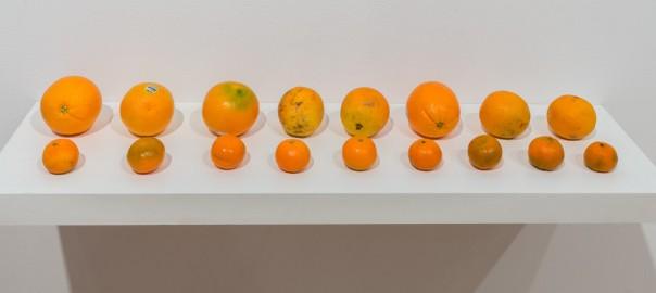 50 Shades of Orange, 2014