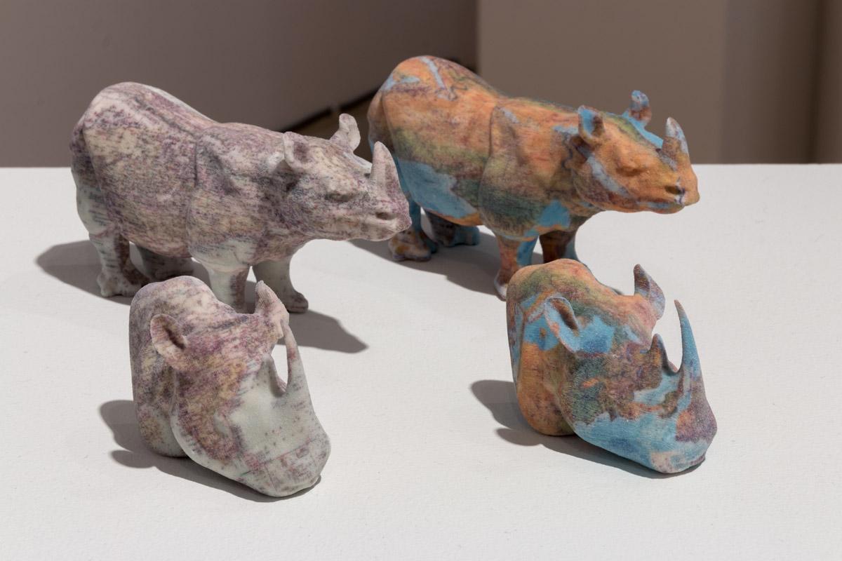 Rhinos, 2014