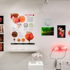 2016 Bio Design Challenge - SVA Exhibition 006