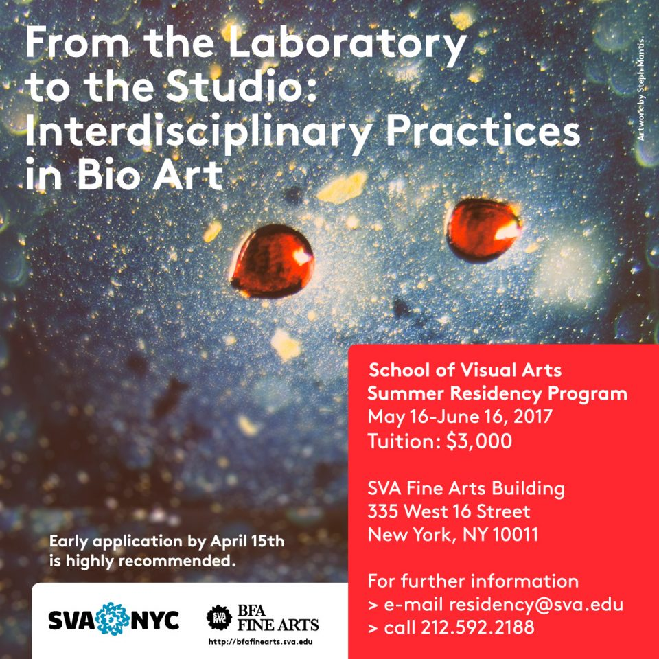 bio-art_summer_residency_2017-sva-nyc-sq
