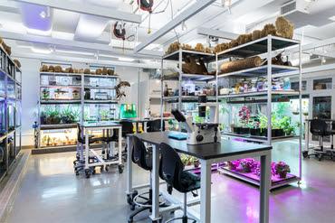SVA Bio Art lab in New York City. School of Visual Arts